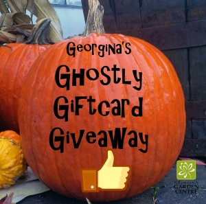 ghostly giveaway oct 30 2013