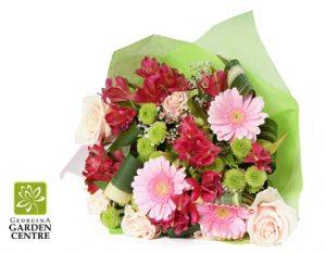 gerbera daisy alstroemeria pinks and greens with georgina garden centre logo
